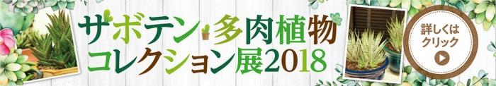 サボテン・多肉植物コレクション展2018